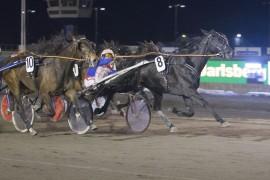 Tross tidlig galopp kunne 8 Super Bull vinne foran 10 Alongcameaspider på Jarlsberg i mars i år (foto: hesteguiden.com)