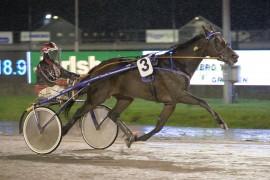 Prince Tanic var overlegen da han bokførte sin andre karriereseier på Jarlsberg med Gunnar Austevoll i vogna (foto: hesteguiden.com)