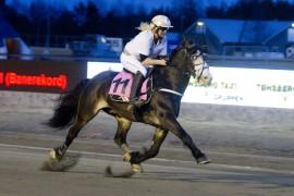 Hedershesten Rigel Elden faller for aldersgrensen og gjør sin siste start for eier og trener Kari Anne Knutsen i V76-2 i dag (foto: hesteguiden.com)