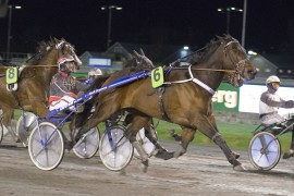 Rocknroll Fi avsluttet i overlydsfart til seier på Jarlsberg sist – i dag tror jeg en smilende Gunnar Austevoll sender ham inn til fortjent finaletriumf i V75-6 på Bjerke (foto: hesteguiden.com)