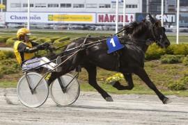 Valle Tiril og Jørn Bjaanes har en finfin oppgave i V75-2 (alle foto: hesteguiden.com)