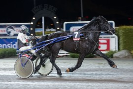 Dag Støvar og Kai Johansen innfridde som vår V76-banker sist og jager sin tredje strake i V76-6 onsdag (foto: hesteguiden.com)