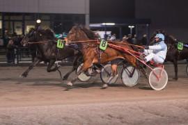Vår herlige banker Gunda (11) tok ned Silke Chasmina på målstreken i V75 på Jarlsberg 14. januar – onsdag møtes de igjen i V76-finalen på Bjerke (begge foto: hesteguiden.com)