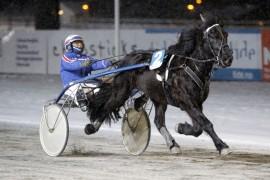 Helle Spik har imponert stort i tre strake seire for Jomar Blekkan – blir det V75-triumf i den tredje avdelingen i dag? (foto: hesteguiden.com)