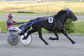 Klarer Gunnar Austevoll å holde høykapable Troll Svenn i skinnet i V76-3 på Bjerke onsdag (foto: hesteguiden.com)