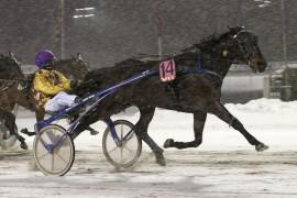 Da Candor Hall og Björn Goop bråt målsnøret først i V75-finalen kunne hele 192 av Stanghjørnets kunder juble over femsifret gevinst (foto: hesteguiden.com)