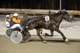 Tross drøy reise kunne Missingmyr Stjernen og Bjørn Strømnes vinne på Biri sist – legger de på til to strake i V76-2 i  kveld) (foto: hesteguiden.com)