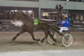14 Ness Tjo Stjerna og Tom Erik Solberg har normalt ingen foran seg om hoppa er tilbake på sitt beste (begge foto: hesteguiden.com)