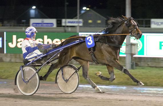 Revenue Lavec var et herlig skue sammen med Lars Anvar Kolle i debuten for Hamrestallen.