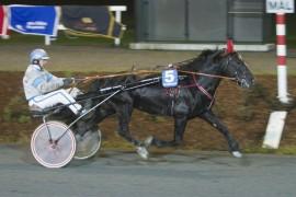 Tross sprint tror jeg Moe Svarten når målstreken først sammen med sin trener Jan Martin Bjerring (foto: hesteguiden.com)