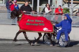 Ove Kenneth Karlsen-trente Ulsrud Tea vant Arne Sems Minneløp i overlegen stil i 2015 og akter å gjenta den bedriften og samtidig stadfeste seg som den beste hoppa i landet (alle foto: hesteguiden.com)