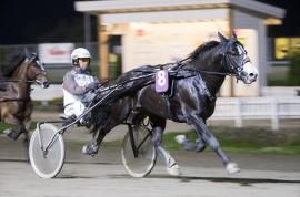 Valle Storm møter konkurrenter han skal slå selv første gang ut etter vinterpause – Eirik Høitomt styrer storfavoritten i V76-3 (begge foto: hesteguiden.com)