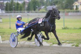 Hage Jerven og Jomar Blekkan tar turen fra trøndelag for å vinne V76-finalen på Bjerke onsdag (foto: hesteguiden.com)