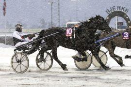 Tross dødens vant Philip Lyn V75 på Bjerke 25. februar – jeg tror Kai Johansen ordner biffen i dag også (begge foto: hesteguiden.com)