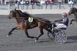 Geir Vegard Gundersen hadde full kontroll sammen med flotte Ramstad Balder sist – forhåpentligvis fortsetter fremgangen med V75-triumf i dag (foto: hesteguiden.com)