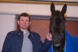 Pål Buer har en skikkelig vinnerhest i Twain Bi som jakter sin 14. triumf i den 28. starten (foto: hesteguiden.com)