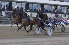 Det er slik vi vil se Emir La Brousse og Magnus Teien Gundersen over mål i V75-finalen i dag (foto: hesteguiden.com)