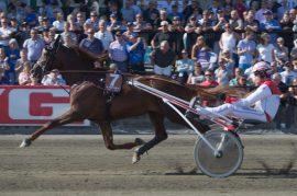 Kan Lionel og Gøran Antonsen sørge for norsk jubel i Oslo Grand Prix søndag? (foto: hesteguiden.com)