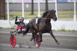 Kristine Kvasnes har fått en flying start som trener – blir det ny seier bak W.J. Eminent Bergen i V76-finalen på Bjerke onsdag? (foto: hesteguiden.com)