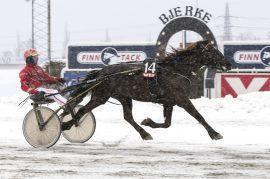 Vår tipsbanker Ness Tjo Stjerna (17%) var overlegen vinner da vi spilte inn 2.7 millioner i V75 på Bjerke 25. februar (foto: hesteguiden.com)