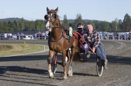 Tar Alm Nagano sin fjerde strake i V76-5 onsdag til glede for kusk Geir Vegard Gundersen og eier og oppdretter Knut Alm? (foto: hesteguiden.com)