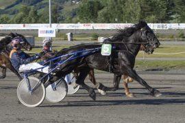 Tross to galopper fløy Smedpål til seier på Biri – ordner Olav Mikkelborg fire strake i V75-2? (foto: hesteguiden.com)