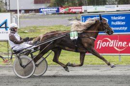 Herlige Brenne Rødi skal ha en fin sjanse til å runde til seier i V75-1 på Jarlsberg i dag (alle foto: hesteguiden.com)