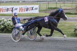 Johan Herbjørn Undem kunne ikke skjule gleden når familiehesten Lego U.N. tok sin første seier på Klosterskogen i juni – i kveld jakter de den tredje triumfen som min frekke alenestrek i V76-1 (foto: hesteguiden.com)