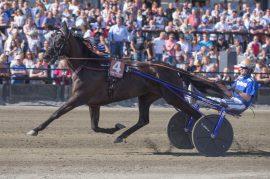 Your Highness og Björn Goop vant OGP i fjor, men ble senere fratatt seieren i en dopingskandale. Tar hoppa sin første seier i ny regi i dag? (foto: hesteguiden.com)