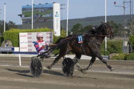 Per Oleg Midtfjeld jakter ny V76-triumf med nyervervelsen Global Republic som kommer fra herlig V75-seier på Färjestad (foto: hesteguiden.com)