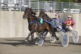 Det er gode tetmuligheter for Lykkerus og Magnus Teien Gundersen – uansett skal favoritten ha en god sjanse i V76-5 (foto: hesteguiden.com)