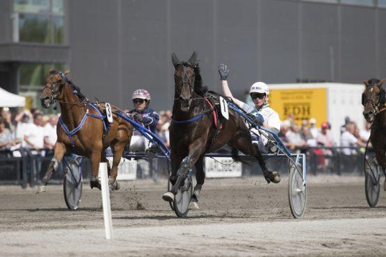 Quite Pepper var overlegen vinner i stayerløpet under JGP-helgen sammen med Hans Christian Holm. Toer ble gode Eye Of The Tiger (alle foto: hesteguiden.com)