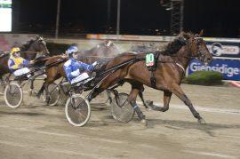 Tar Adrian Solberg Akselsen sin andre strake seier i Bjerkebanens serie for stallansatte med A Winner i V76-2 på onsdag? (foto: hesteguiden.com)
