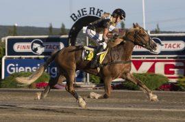Strikkeprinsen og Martine Sørvik debuterte med overlegen seier på Bjerke i august – i kveld tror jeg den fjerde strake montèseieren bokføres (foto: hesteguiden.com)