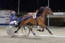 Tar Magnus Teien Gundersen og Bråtnesfaks sin tredje Bjerkeseier i V76-5 i kveld (fotos: hesteguiden.com)