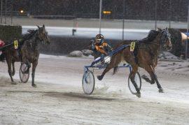 Memphis Tennessee E.P. hadde full kontroll sist – kan hesten sjokke i V76-4 i kveld? (foto: hesteguiden.com)