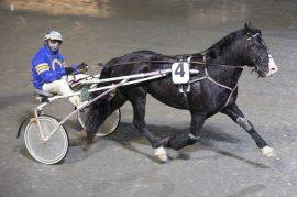 Tripsson Ø.K. er i toppform, men står uten seier i raden. Tar han sin første triumf i Antonsen-regi i V76-finalen onsdag? (foto: hesteguiden.com)