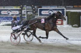 Code Bon vant helenkelt i norgesdebuten – ny seier i V76-6 onsdag? (foto: hesteguiden.com)