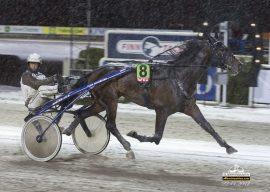Tar Seventeenth of May sin andre Bjerketriumf sammen med Eirik Høitomt i V76-3 i kveld? (foto: hesteguiden.com)