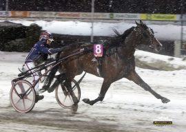 Magnus Teien Gundersen kunne gi Code Bon et velfortjent klapp på baken etter nok en imponerende seier sist – trolig blir det reprise i V75-3 i dag (foto: hesteguiden.com)