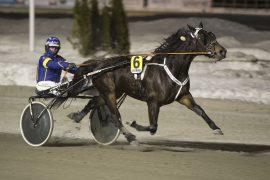 6 Quite Cool Classic og Kristian Malmin har planer om å lede V75-5 fra start til mål (foto: hesteguiden.com)