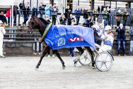 Fjorårets Derbyvinner Cokstile avlegger en spennende årsdebut sammen med Lars Anvar Kolle i V76-6 på onsdag (foto: hesteguiden.com)