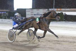 Normandie Royal og Frode Hamre blir favoritter i et herlig hoppeløp som avslutter V76-veddemålet onsdag – og også sentral i DD-spillet der det ligger 100 tusen ekstra (foto: hesteguiden.com)