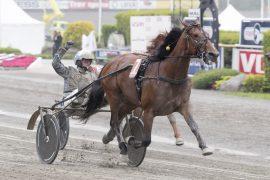 Fjorårsvinner Twister Bi trent av Jerry Riordan og kusket av Christoffer Eriksson er det største trekkplasteret i årets Oslo Grand Prix på søndag (foto: hesteguiden.com)
