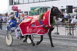 Høykapable Åsrud Vilja kommer ut etter lang pause i V76-1 onsdag – kan hun og Kristian Malmin tukte storfavoritten Lykkje Borka? (foto: hesteguiden.com)