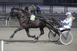 Tar glassøyehesten Lørje Trollet sin femte strake tredjeplass eller loser Christina Hande Lome Elden-vallaken inn til en etterlengtet seier i V76-finalen på Bjerke onsdag? (foto: hesteguiden.com)