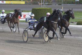 Sist tuktet Uendy Z.S. og Kristian Malmin selveste prinsessa da de tok seg av Hest360-løpet – onsdag kan 5-års hoppa (som forøvrig er tilsalgs) ta sin andre strake Bjerketriumf i V76-6 (foto: hesteguiden.com)