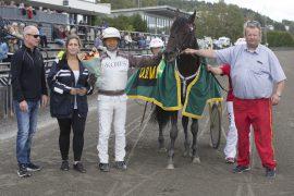 Annie's Boy er nok en hest som har forvandlet seg hos Tor Olaf Halle og i V76-4 onsdag blir 6-åringen storfavoritt til årets syvende triumf fra et perfekt andrespor (foto: hesteguiden.com)