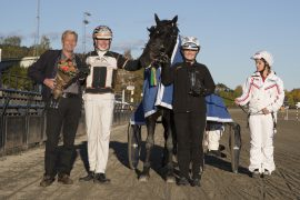 Tekno Jerken har ikke seiret siden 11-åringen vant Bjerkebanens stayerløp i oktober i fjor – kan eier Tor Brænden og kusk Erlend Rennesvik juble etter V76-1 onsdag? (foto: hesteguiden.com)