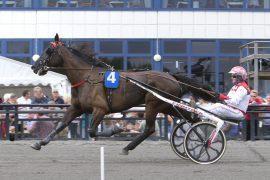 Knud Mønster kommer fra Danmark med Listas Manboy som jakter sin fjerde strake seier i V76-5 på Bjerke onsdag (foto: hesteguiden.com)
